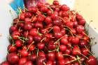Tonnes of New Zealand cherries and lobsters are being flown to Asia in time for Chinese New Year.