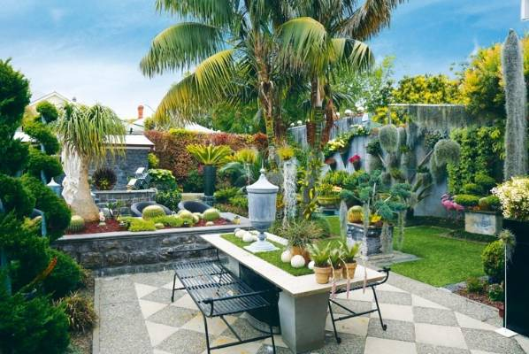 Garden of the week: Vibrant Mt Eden garden 21 years in the making ...