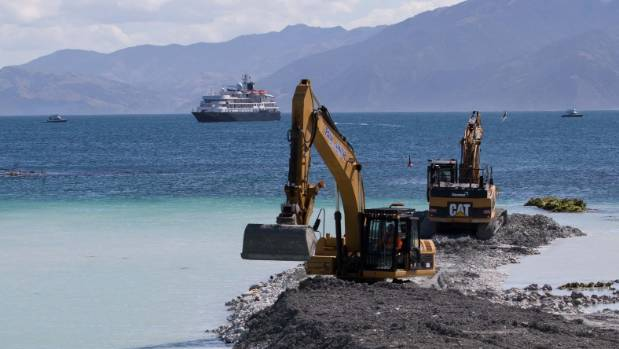 Diggers build a levy around the Kaikoura marina while The Caledonian Sky cruise ship sits in the bay in the background.