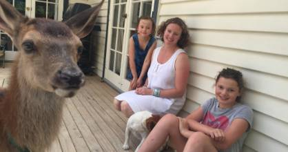 Fern the fawn has become a much-loved part of the Wellbrock family.