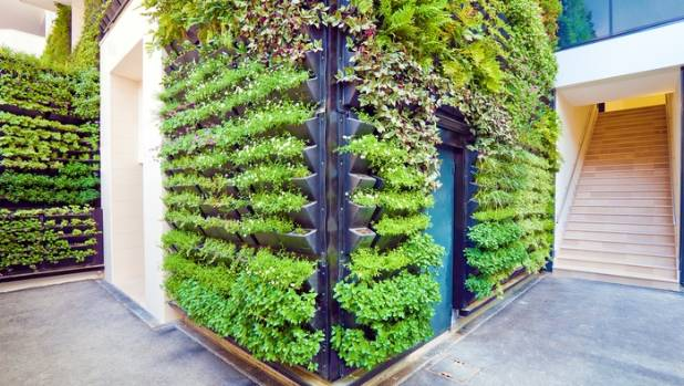 Whether for commercial or residential purposes, a vertical garden makes an impression.