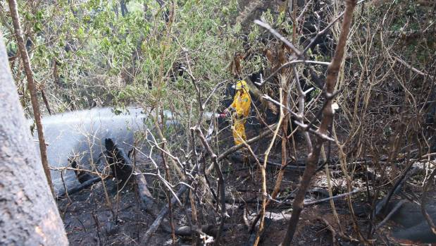 Flames burned through 10 hectares and four houses.