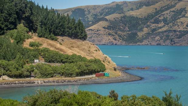 Takapuneke reserve: Around the corner from Akaroa, the existing sewage treatment is hidden among trees.