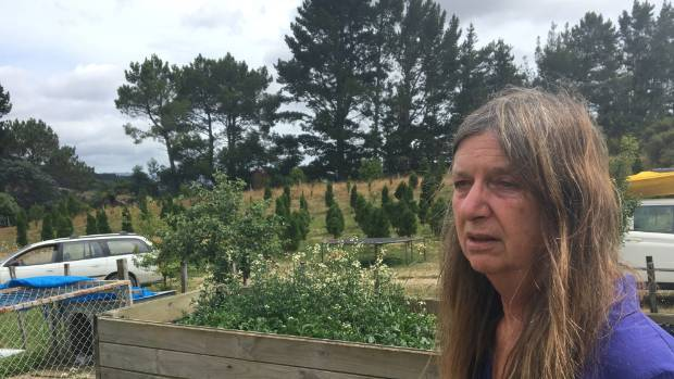 Comer Road resident Helen Lee lost her home in the bush fire near Whitianga.
