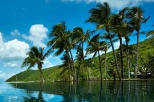 Orpheus Island is a tropical island dream.