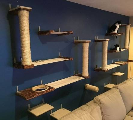 Pet Furniture The Spoiled Pets Of Instagram
