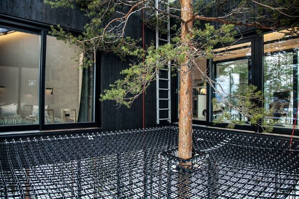 The treehouse is built around the huge pine trees 10m above the ground and is intended to 'close the gap' between man ...