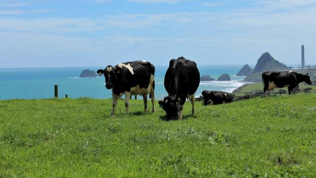 Six of the eight land titles that made up the Jury family farm in Omata have been sold.