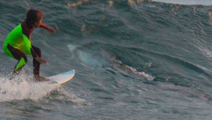 The Moment The Shark Spotted Eden Hasson Father S Surf