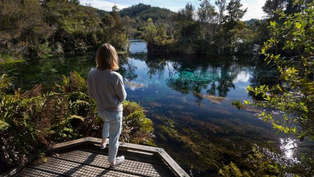 The springs in Golden Bay are a unique beauty spot.