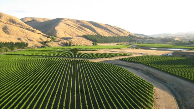 Craggy Range vineyard, Hawke's Bay, is family-owned winery.