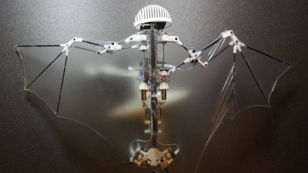 The bat robot flaps its wings for better aerial manoeuvres, glides to save energy and dive bombs when needed.