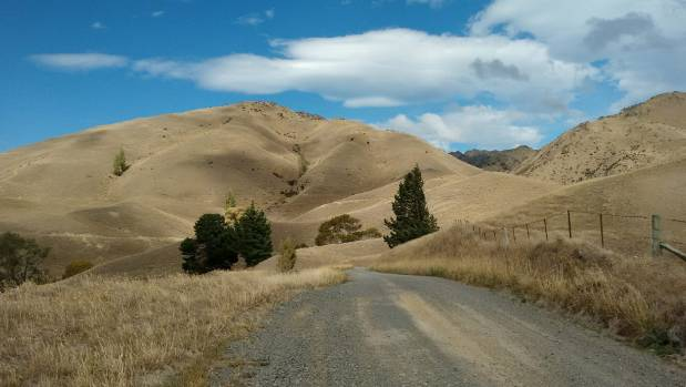 Farms in eastern areas like Marlborough are getting very dry while the west has been soaked.