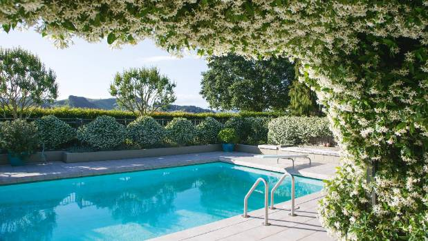 Masses of jasmine provide a sweetly scented backdrop to this Gisborne pool.