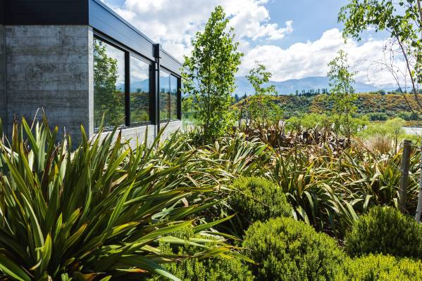 Garden of the week award winning landscape in queenstown for Low maintenance garden nz
