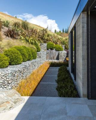 The gabion baskets contrast with upright slabs of macrocarpa; Hebe odora is planted above with Libertia peregrinans and ...