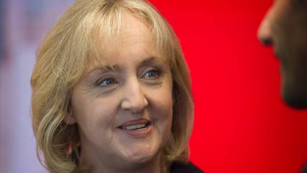 Minister of Justice Amy Adams says the Government's concerns about the bill still stand, but it's worth progressing to ...