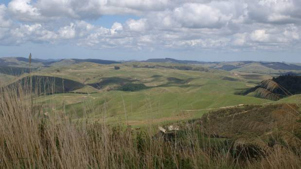 Wairarapa farmers have had enough of the ferocious wind that just won't let up.