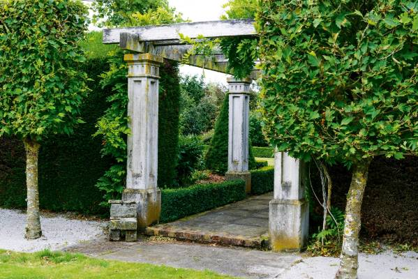 Kevan made the concrete pillars along the wisteria walk using old doors as boxing to achieve the decorative relief.