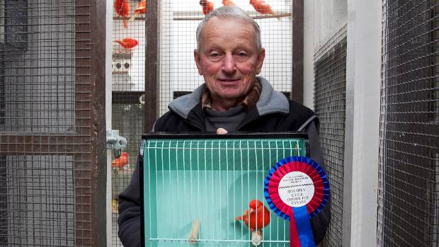 Bob Smith with one of his prize-winning red factor canaries.