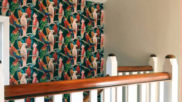 The parrot wallpaper in this Christchurch home makes a statement.