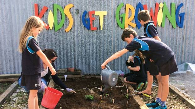These students from Pillans Point School, Tauranga, have embraced their school garden initiative.