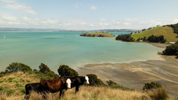 The 189 hectare block overlooks Pipitewai Bay towards the eastern end of Waiheke.