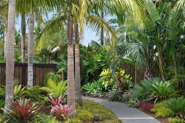 Garden of the week Subtropical Gisborne garden Stuffconz