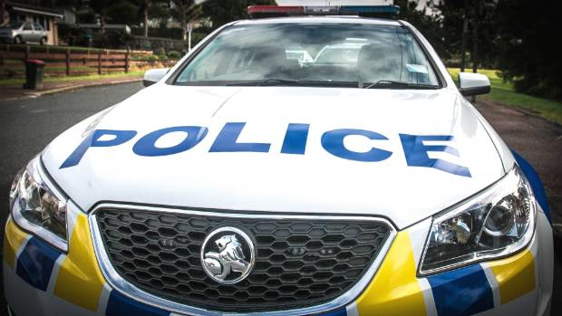 Jettisoned marijuana was splattered onto the bonnet of a police car during a high speed chase through Pirongia.