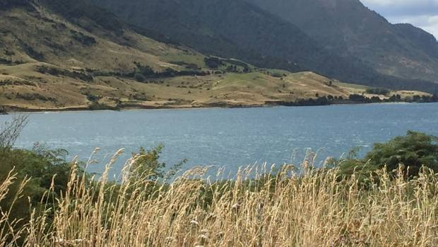 A Wrinkle In Time film location is being set up on a grassy knoll on the far side of Lake Hawea.