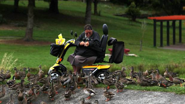 Denise Capper surrounding by ducks at Tokoroa's Lake Moananui.