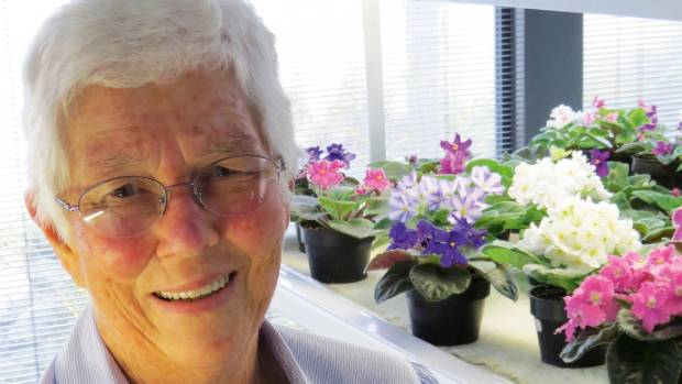 Passionate African violet collector, Betty Enticott.