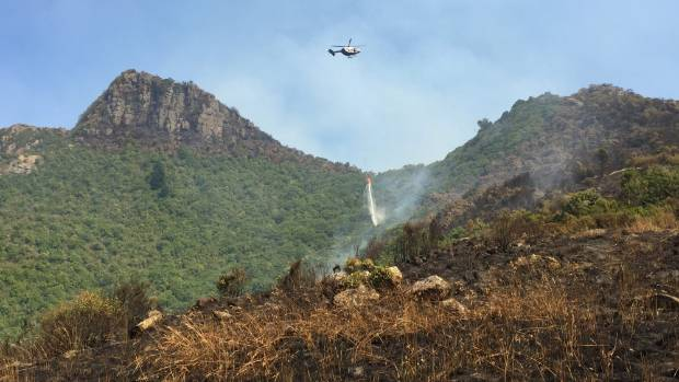 A helicopter with a monsoon bucket drops water on trees in the Ella Track/Cass Ridge Track area above Governors Bay.