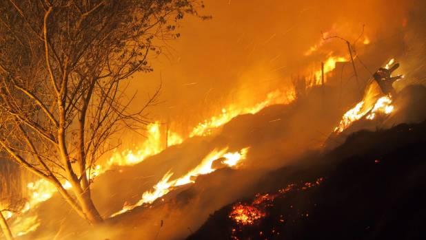 The fire burns through Christchurch's Victoria Park on Wednesday night.