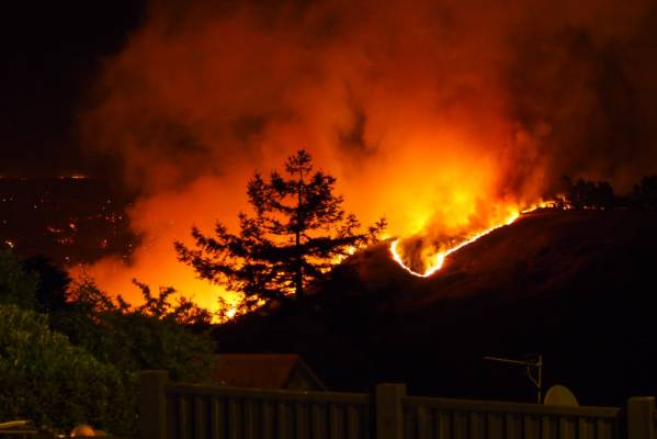 Fire burning in Victoria Park, Christchurch, on Wednesday evening.