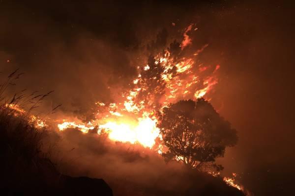 Fire burning in Victoria Park, Christchurch.