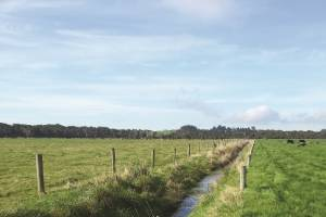 Farm environmental plans allow farmers to tailor their farm's environmental activities to manage risks in relation to ...