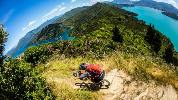 A mountain biker on the Queen Charlotte Track, which could link up as part of the proposed 'Coastal Pacific Trail'.