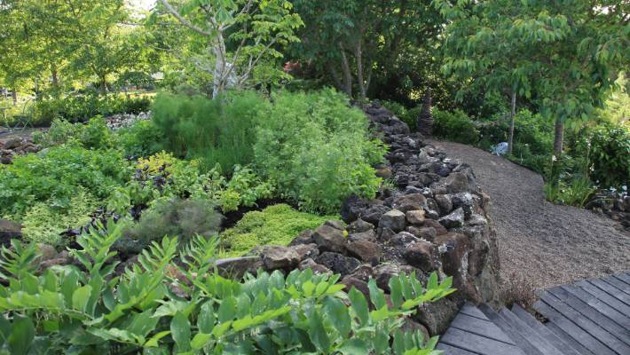 10 Tips To Help You Grow All The Herbs You Ll Ever Need Stuff Co Nz