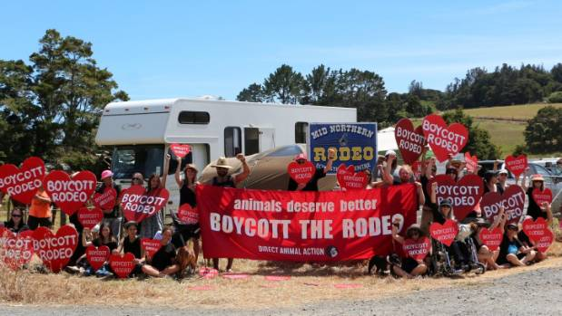 Protesters outside the Mid Northern Rodeo in Maungatapere.