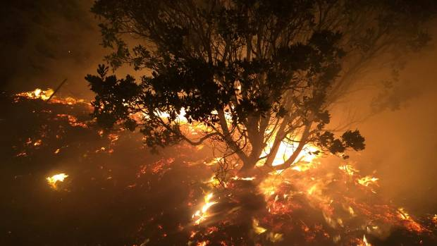 Fires near the Harry Ell track, Victoria Park, fanned by easterly winds about 11pm on Wednesday.