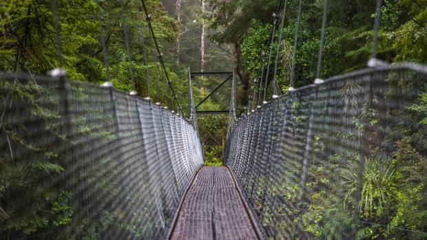 Swing bridges and boardwalks make the walk it more accessible.