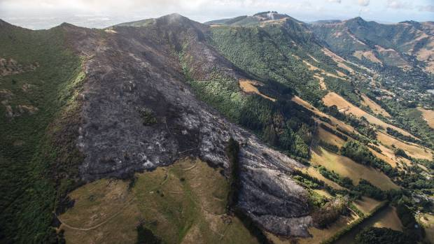 Fire tore through the Ohinetahi Bush Reserve.