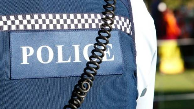 Police in Wainuiomata were fortunate the public came to their aid in an intense pursuit.