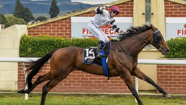 Riverton trainer Graham Eade and his horse La Nouvelle Vague  will attempt to make it a Dunedin Cup and Invercargill Cup ...
