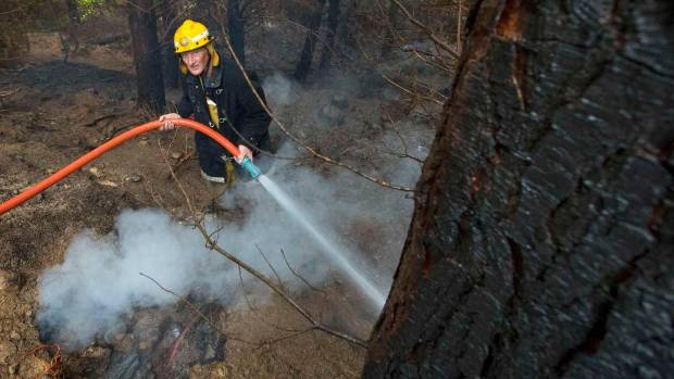 A firefighter dampens down areas affected by the Port Hills fires.