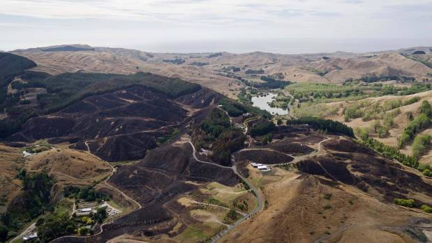 Firefighters from across the country travelled to Hawke's Bay to help battle the blaze.
