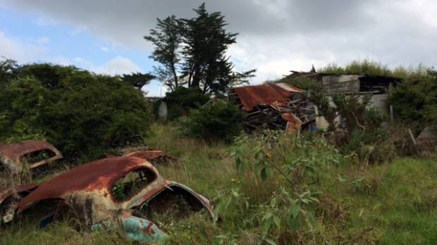 About 50 rusty cars sit on the Mangere property.