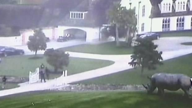 Kim Dotcom's mansion was raided in 2012.