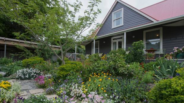 Nancy Tichborne's is on an ongoing search to find a red-flowering plant to tie in the colour of the roof of her 1970s home.